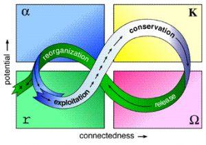 The Adaptive Cycle
